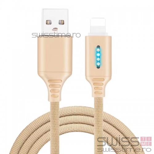 Cablu de date si incarcare tip USB-C 1m 13009CBL-auriu